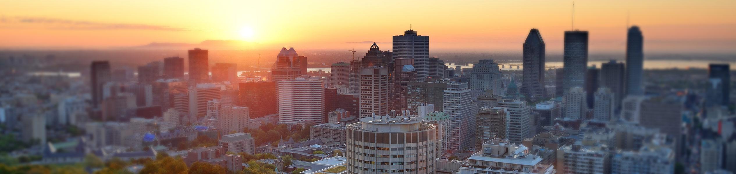 Aliquando site web immobilier vue sur Montréal
